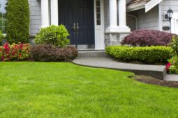 Important Questions To Ask Before Hiring Landscaping Contractor